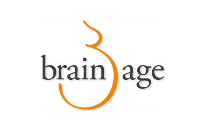 Brain Age: Not as Good for Your Brain as Claimed